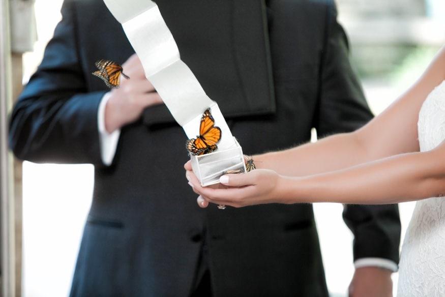Outdoor wedding ceremony at Holly Hedge same sex wedding.